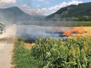Ackerbrand in Geiersdorf – 27. Juli 2019